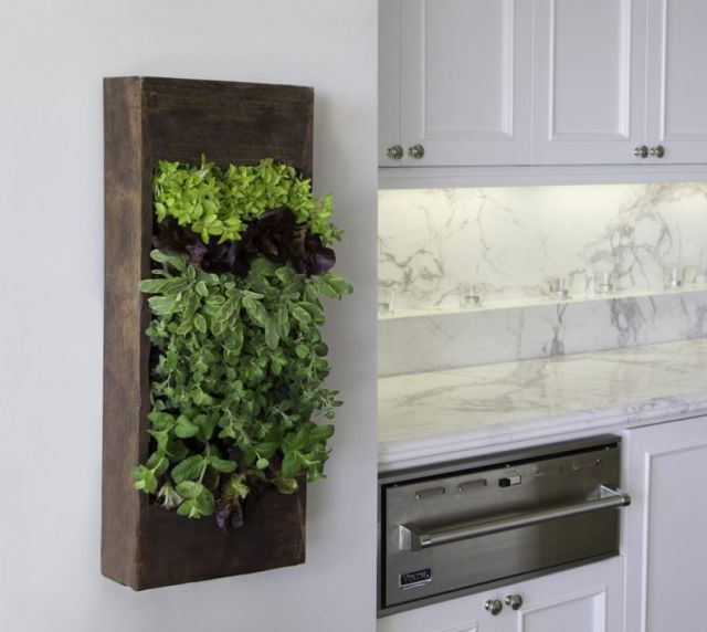 Fantastic indoor herb garden ideas