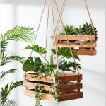 Awesome Indoor Plant Wall Ideas