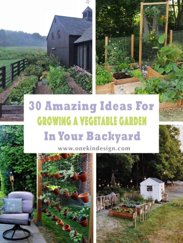Adorable backyard garden ideas vegetables