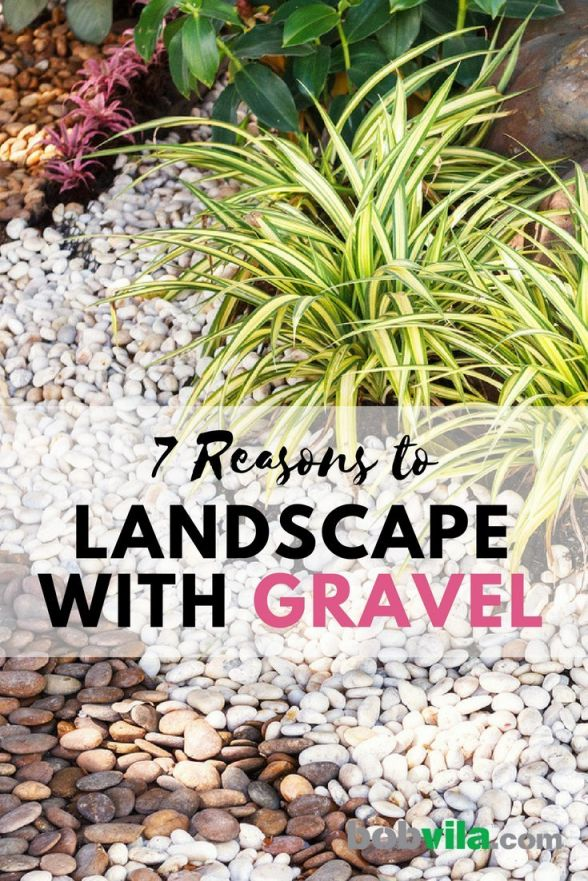Best front garden ideas with gravel