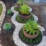 Cool Front Garden Ideas On A Budget