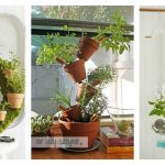 Cool Indoor Herb Garden Ideas