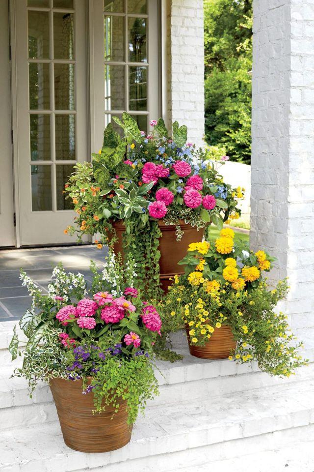 Best ideas for large flower pots