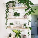 Gorgeous Indoor Plant Wall Ideas