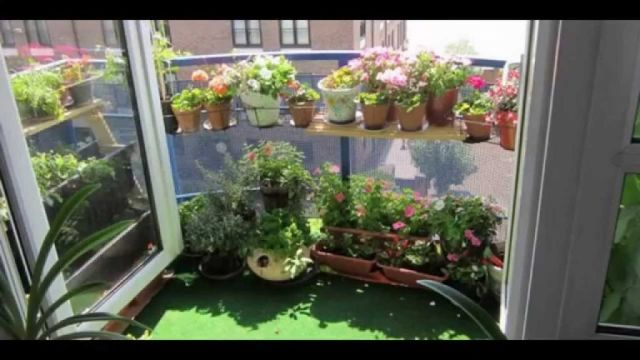 Cool indoor vegetable garden ideas