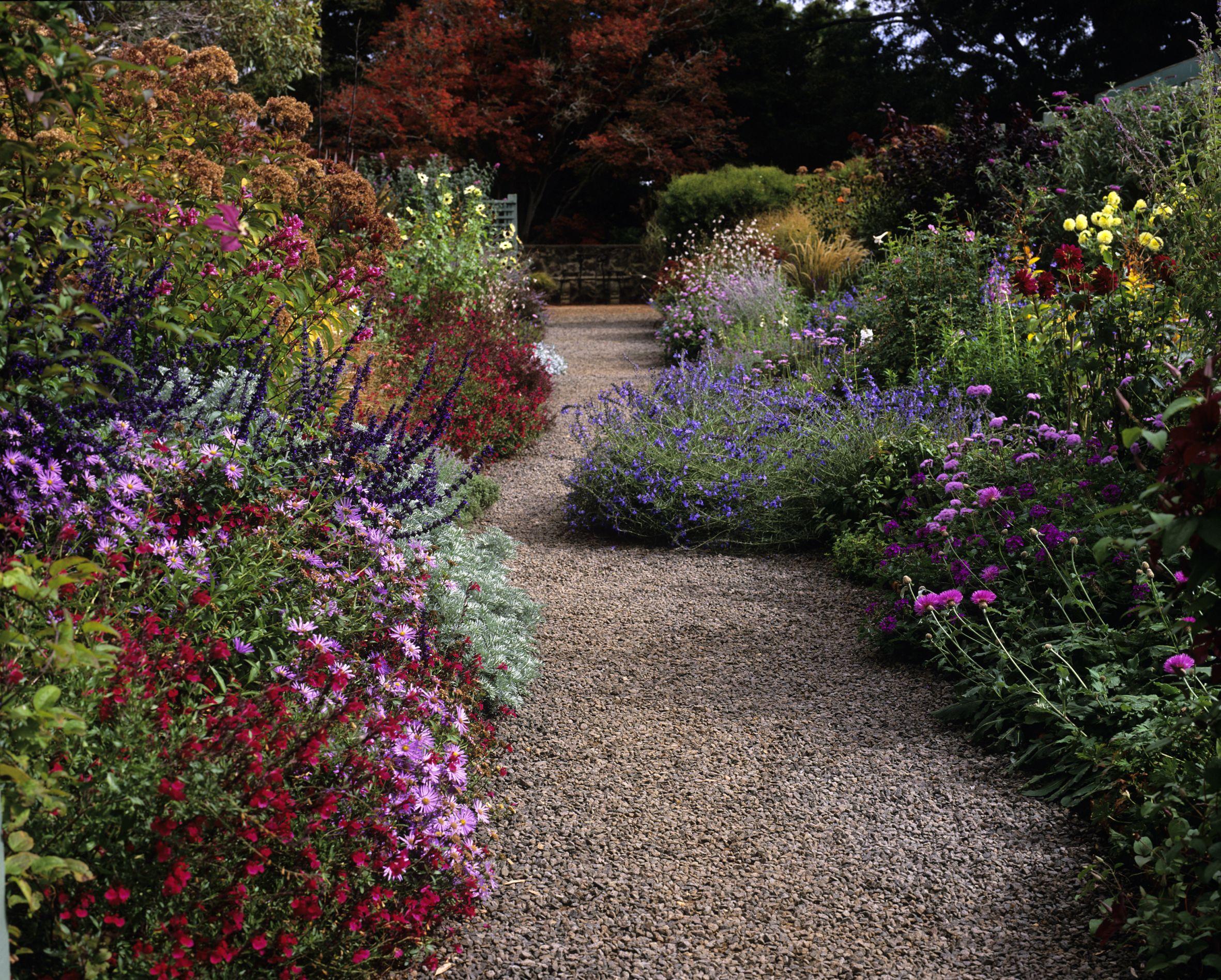Top Garden Border Planting Ideas