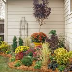Best Small Flower Bed Ideas For Front Of House