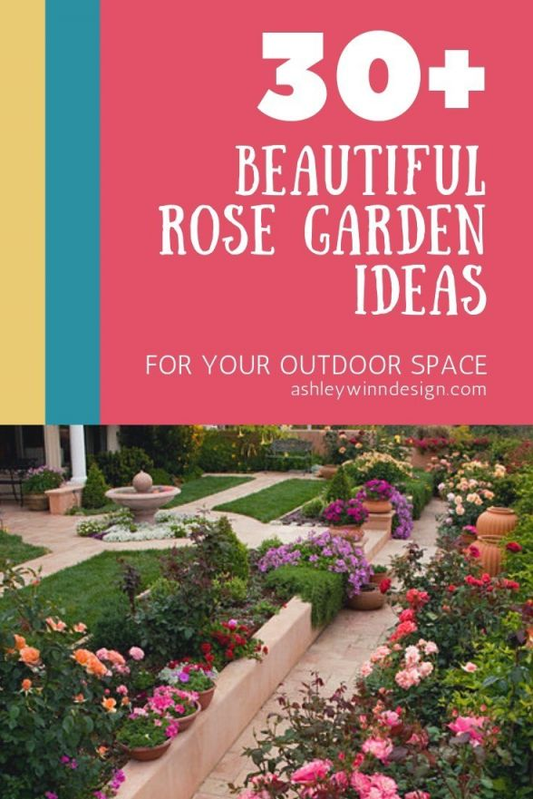 Wonderful  front yard landscaping ideas roses