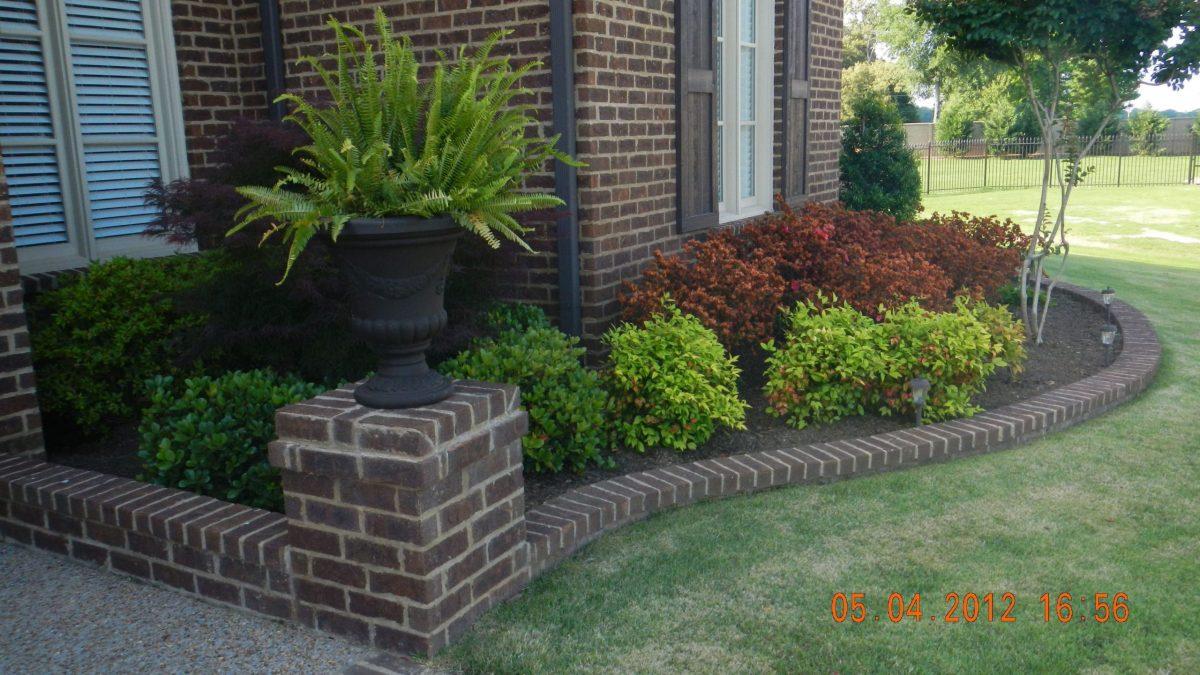 Cool  low maintenance front garden ideas