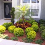 Gorgeous Low Maintenance Front Garden Ideas
