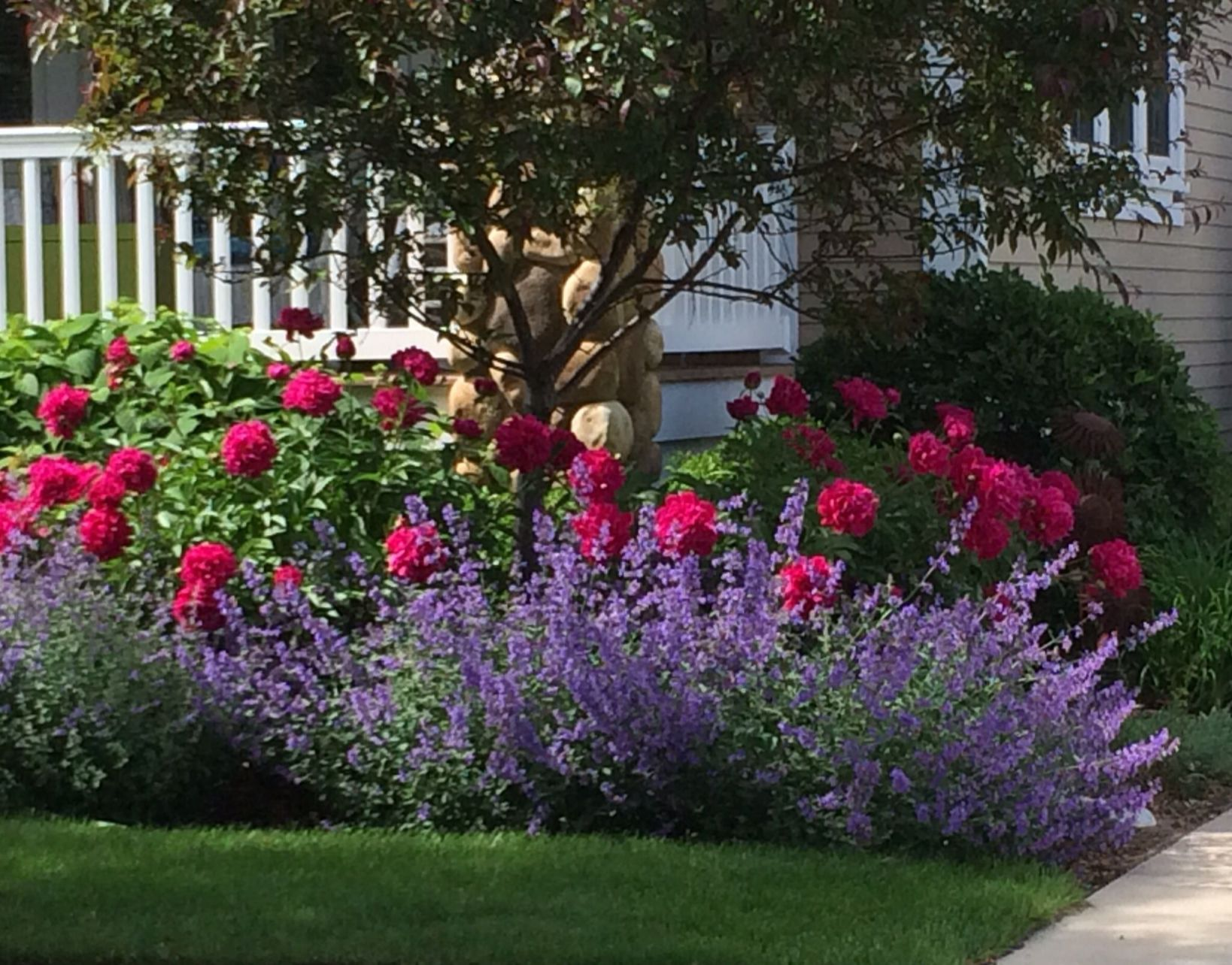 Top Front Yard Landscaping Ideas Roses