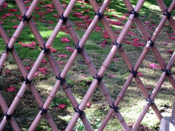 Fence (4)