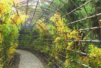 GardeningArch (3)