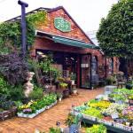 フローラ黒田園芸のお店の入り口