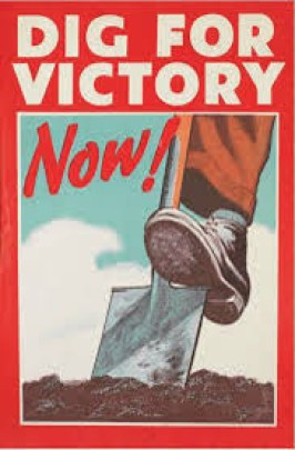Dig for victory - victory garden poster