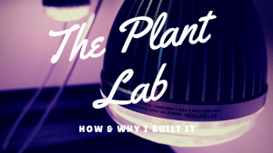 How & Why I Built my Plant Lab