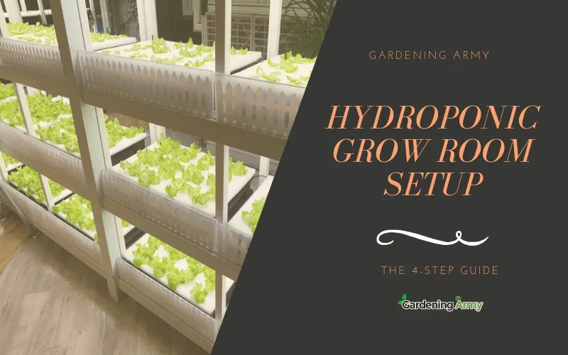Hydroponic Grow Room Setup