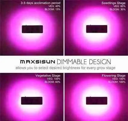 MAXSISUN Dimmable light review