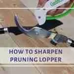 how to sharpen loppers