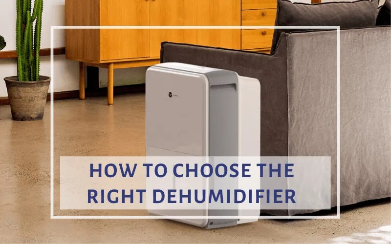 how to Choose the right dehumidifier