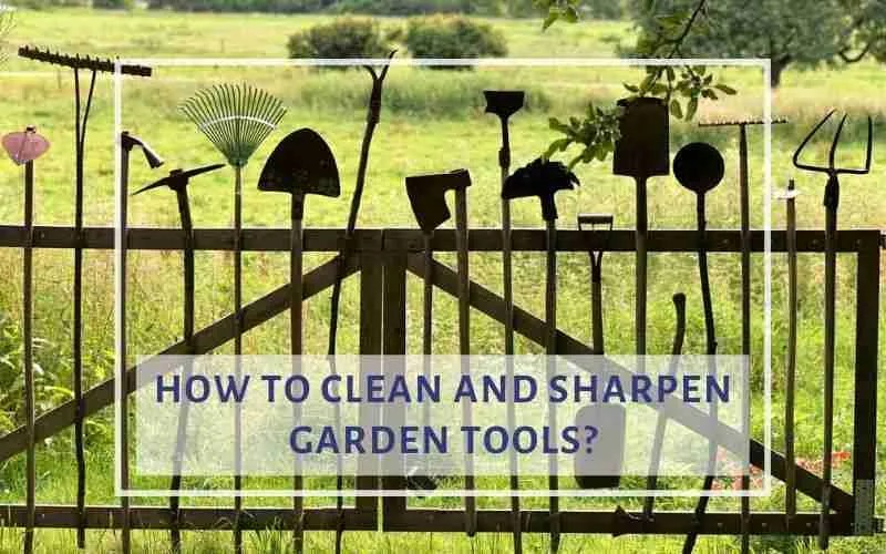 Sharpen Garden Tools