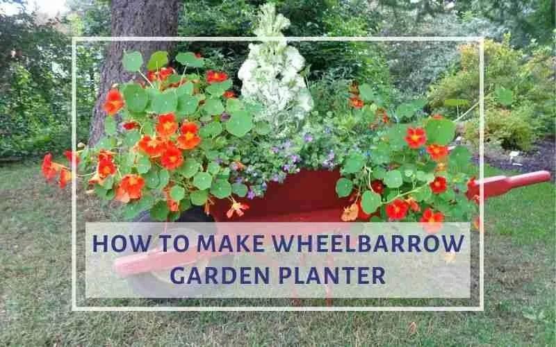 Make Wheelbarrow Garden Planter
