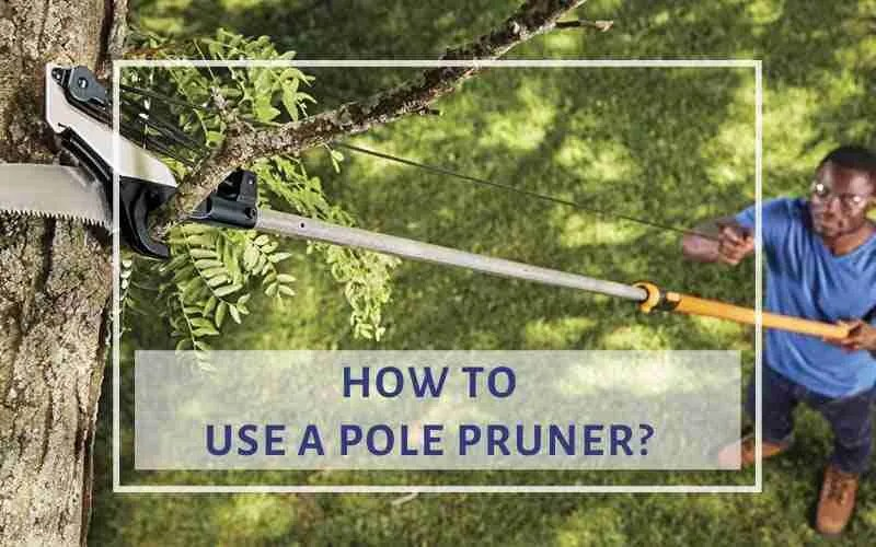 how to use pole pruner