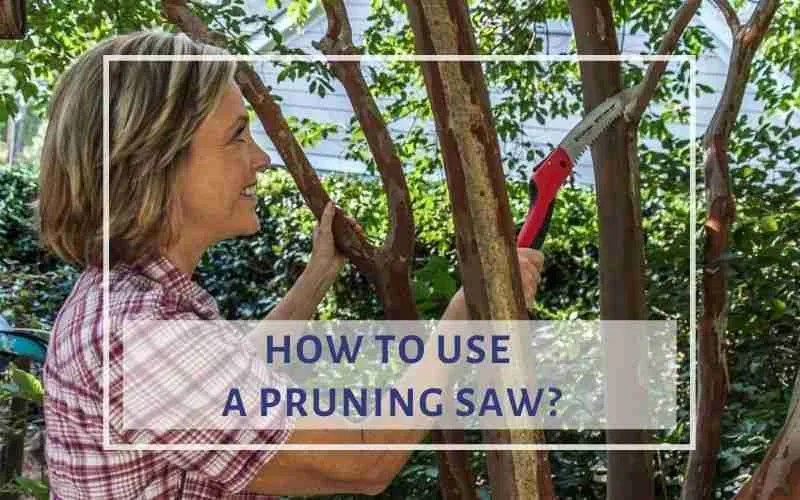 How to use pruning saw