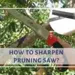 how to sharpen a pruning saw