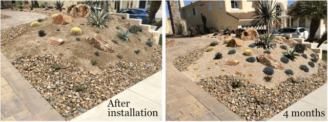 Gleason, install & after 4 mos