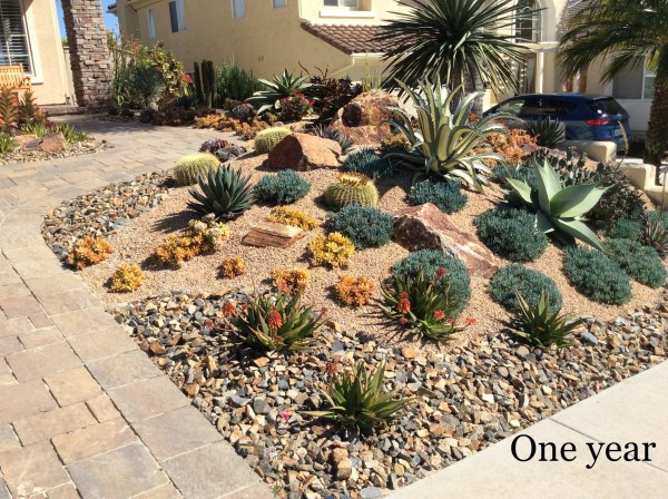 lawn front yard of