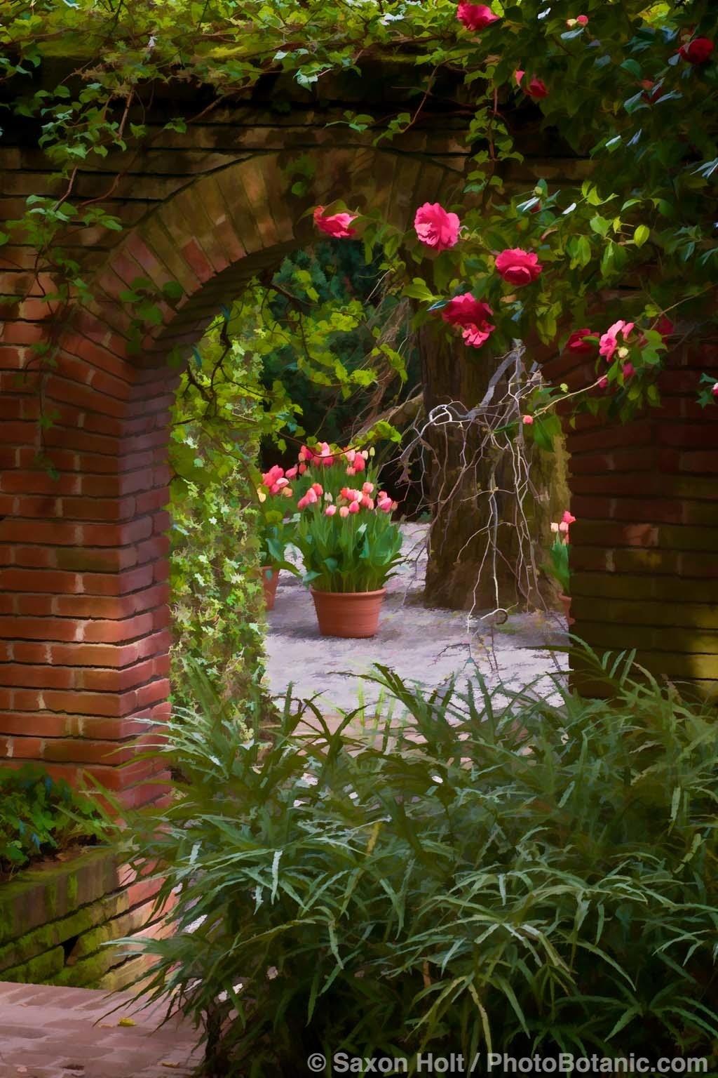 Gate Through the Wall Garden at Filoli