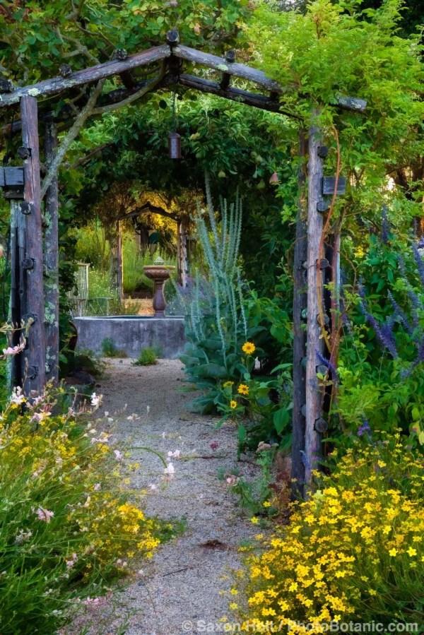Garden Saxon Holt Shares 11 Fine Art