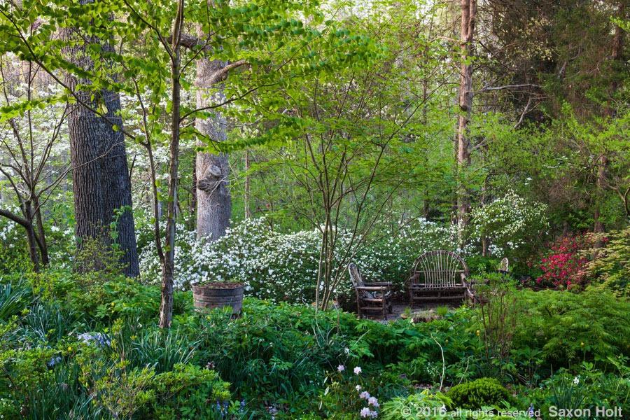 Andrew & Frances Boninti Garden
