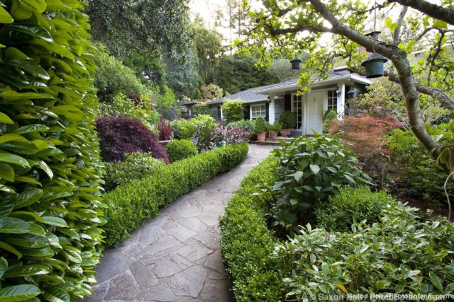 Flagstone path entry through garden of folliage shrubs framed by hedge and tree
