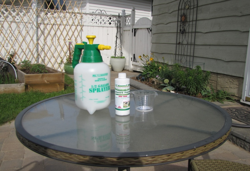 Product Review: LawnLift Grass Paint (2/6)