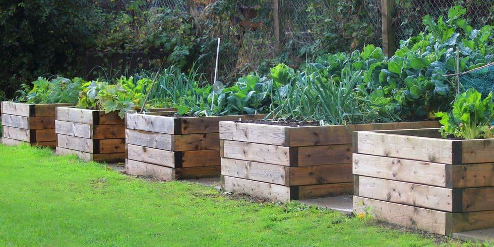 45 raised garden bed ideas with videos