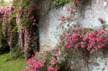 Garden Of Ninfa Sermoneta Italy Gardening Jules