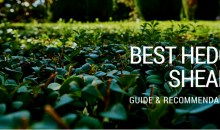 Best Hedge Shears: Guide & Recommendations