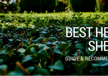 Best hedge shears - reviews & recommendations