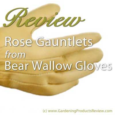 Review of Bear Wallow rose gauntlet gloves