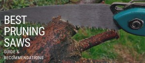 Best pruning saws guide featured image