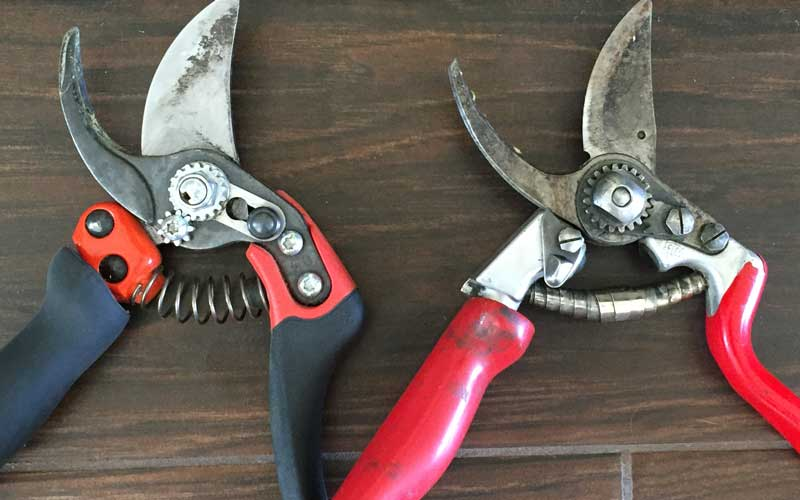 springs on pruning shears