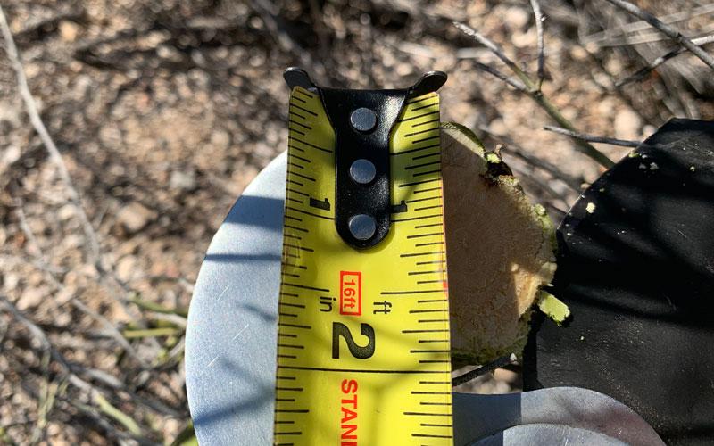 Centurion Double Gear Lopper two inch wood