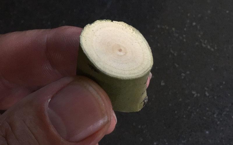 Corona RatchetCUT pruner clean cuts