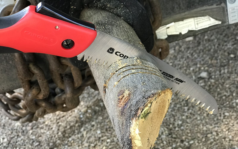 Corona folding hand saw in use