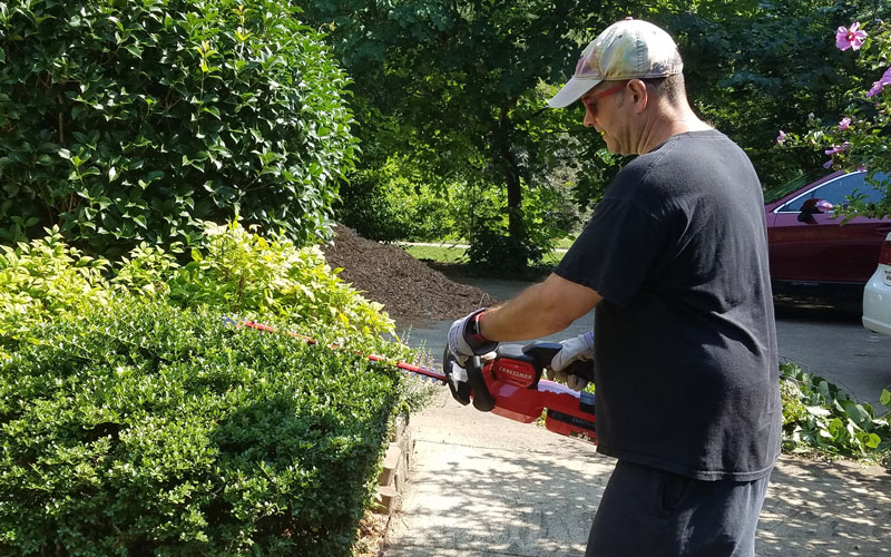 Craftsman 60V Hedge Trimmer tame your wild bushes