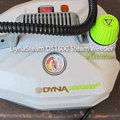 DynaSteam DS1600 Steam Weeder Review