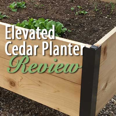 Elevated Cedar Planter from Gardener's Supply - Review