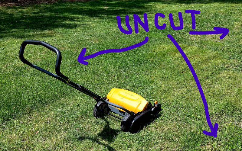 Fiskars Reel Mower cut grass